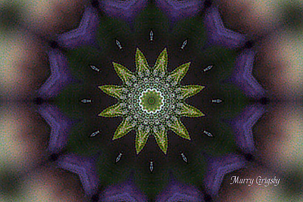 CHLF Kaleidoscope 02