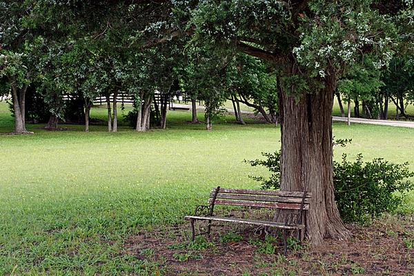 CHLF 2009 MAY Farm 14