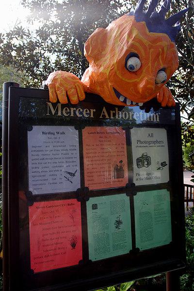 MG Goolish Mercer