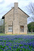 2003 04 Flowers Bluebonnets and stone building near Marble Falls Texas