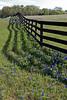 WC 2009 MAR FM1155 Fence shadows