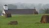 2014 10 10 WC Making hay before church