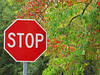 2014 11 TW Autumn stop sign