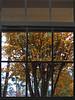 2013 12 59W Winter window