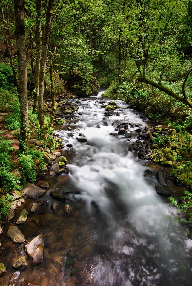 Bridal Veil Creek, Columbia River Gorge, Oregon.