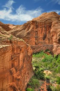 Davis Gulch Glen Canyon, Utah. Copyright © 2010 All rights reserved.