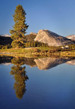 Lembert Dome Reflected in Tuolumne Meadows Yosemite National Park, California.  Copyright © 2011 All rights reserved.