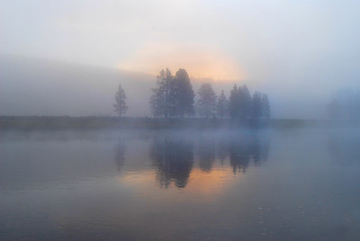 Fog and Trees, Yellowstone River.  Yellowstone National Park, Wyoming.  Copyright © 2007 All rights reserved.