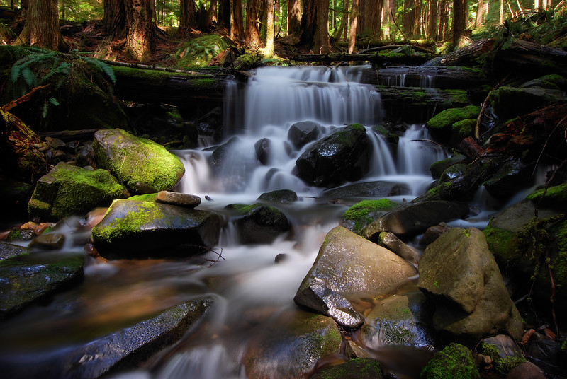-PHOTOGRAPH OF THE DAY (October 30, 2011)<br /> MyParkPhotos.com<br /> <br /> Cascade in the Sol Duc Rain Forest<br /> Olympic National Park, Washington.<br /> Copyright © 2008<br /> All rights reserved.