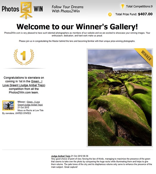 """1ST PLACE WINNER (October 2012)<br /> Competition """"Green, I Love Green""""<br /> Photos2Win.com"""