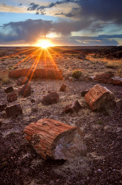 -PHOTOGRAPH OF THE MONTH (May 2011)<br /> Overall Winner MyParkPhotos.com<br /> <br /> Sunset in the Petrified Forest<br /> Petrified Forest National Park, Arizona.<br /> Copyright © 2011<br /> All rights reserved.