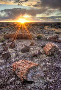 Sunset in the Petrified Forest Petrified Forest National Park, Arizona.  Copyright © 2011 All rights reserved.
