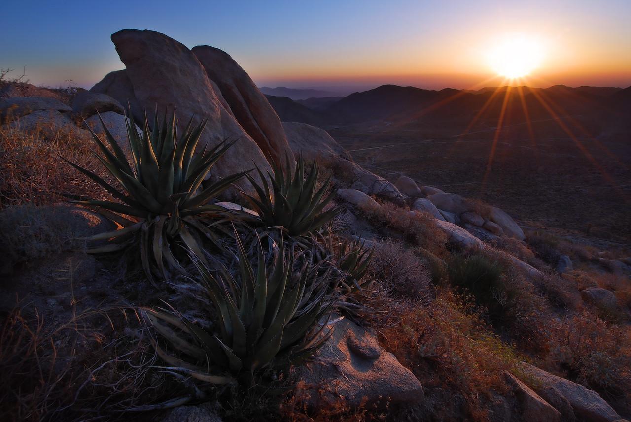 Desert Sunrise.  Jacumba, California.