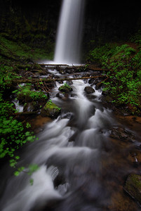 Lower Latourell Falls.   Columbia River Gorge, Oregon. Copyright © 2008 All rights reserved.