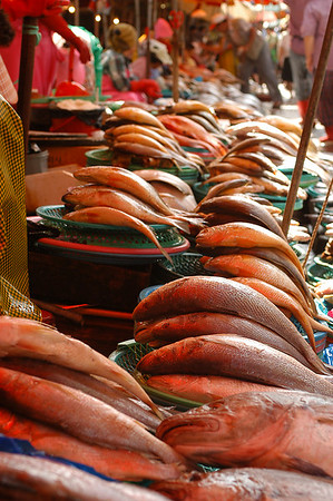 Sea Food market, Seoul, South Korea.