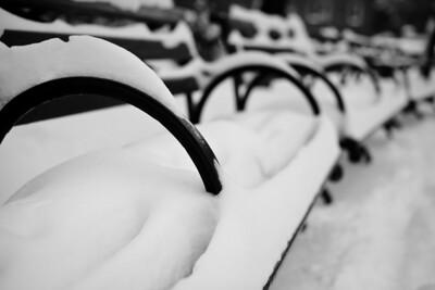 Cobble Hill   Winter 2009   Brooklyn, NY