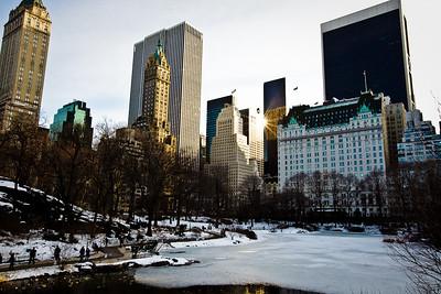 Central Park | Winter 2010 | New York, NY