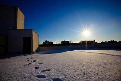 Cobble Hill | Winter 2010 | Brooklyn, NY