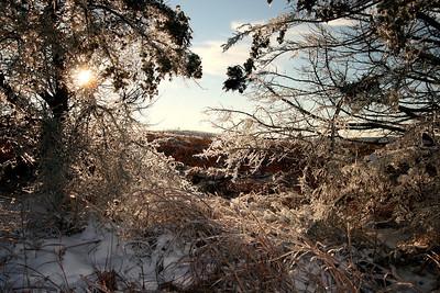 Ice Storm | Winter 2008 | Manhattan, KS