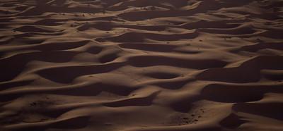 Sahara under the light of the full moon