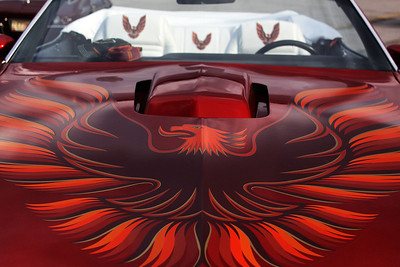And of course, there is nothing more defining on a 1979 T/A than the screaming chicken!