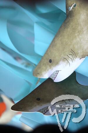 CHATHAM BEACH & TENNIS CLUB — sharkFest Chatham, MA 8 . 8 - 2014
