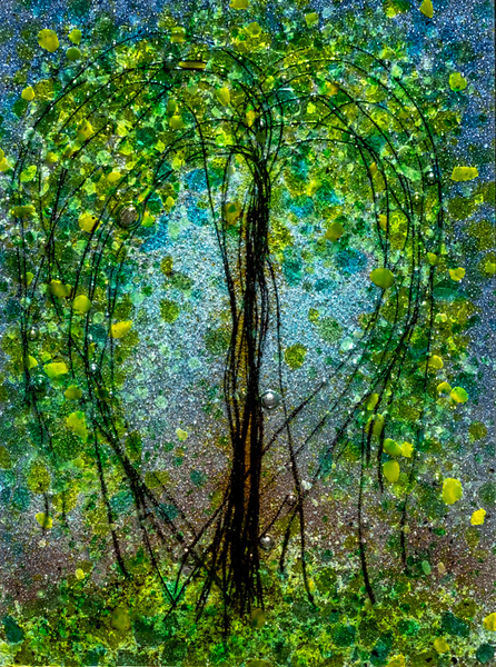 2019-03-10-Tree 2-013.jpg