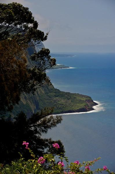 Curved Water, Waipio Valley, Hawaii