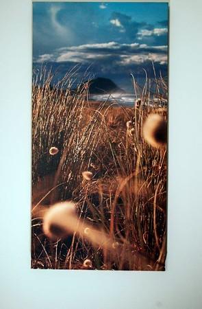 Dunes, Papamoa with Mount Maunganui in distance. Canvas;size; 80 X 40cm Original image at; .brianscantlebury.com/popular/542667000_SLxwzMC#!i=542667000&k=SLxwzMC