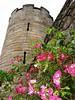 00afavorite stirling castle turret