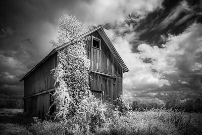 """MONTH 11:  Vestiges of Yesteryear:  Week  4, """"Vintage Barn"""