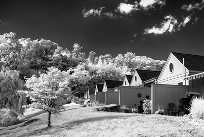 "MONTH 10:  Infrared with A6000, Week 1,"" Neighborhood."""