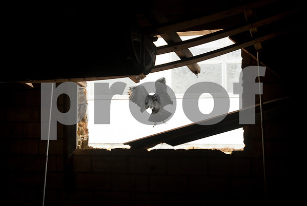 A vulture flies inside the now vacant Carlton Hotel building in Tyler Thursday April 2, 2015. Smith County paid $64,400 for a study on the feasibility of remodeling the old Carlton Hotel building and parking garage located on the corner of Elm Street and Broadway Ave. in downtown Tyler. The county hopes to utilize the space for District Courts and other county staff. The building is 16 stories tall and includes a basement.   (Sarah A. Miller/Tyler Morning Telegraph_