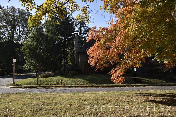 Carle Park, Urbana IL