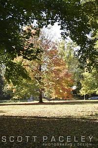 Carle Park, Urbana, IL