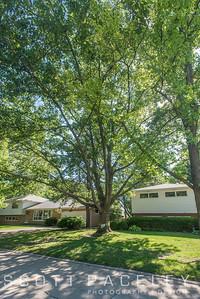 Legacy Trees 2207 Cottage Grove Burr Oak