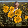 100 across Sunflowers-T.G. Jackson's	 Indian Head	 08/21/1943