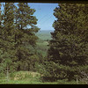 Cypress Hills - up the hill from Boyd's ranch.	 Maple Creek	 07/04/1948
