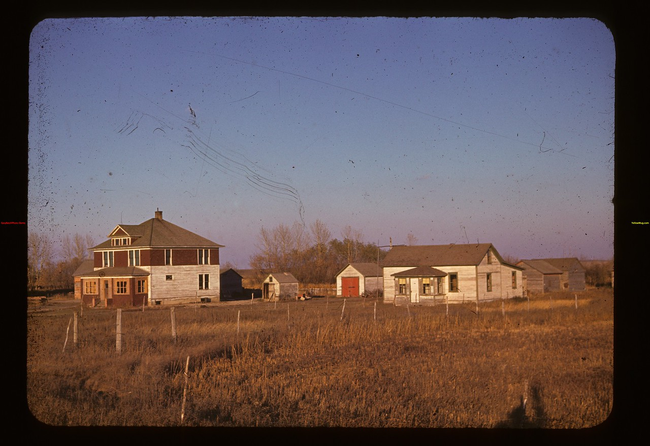L. Brouillette farm yard.	 Landis	 10/13/1940