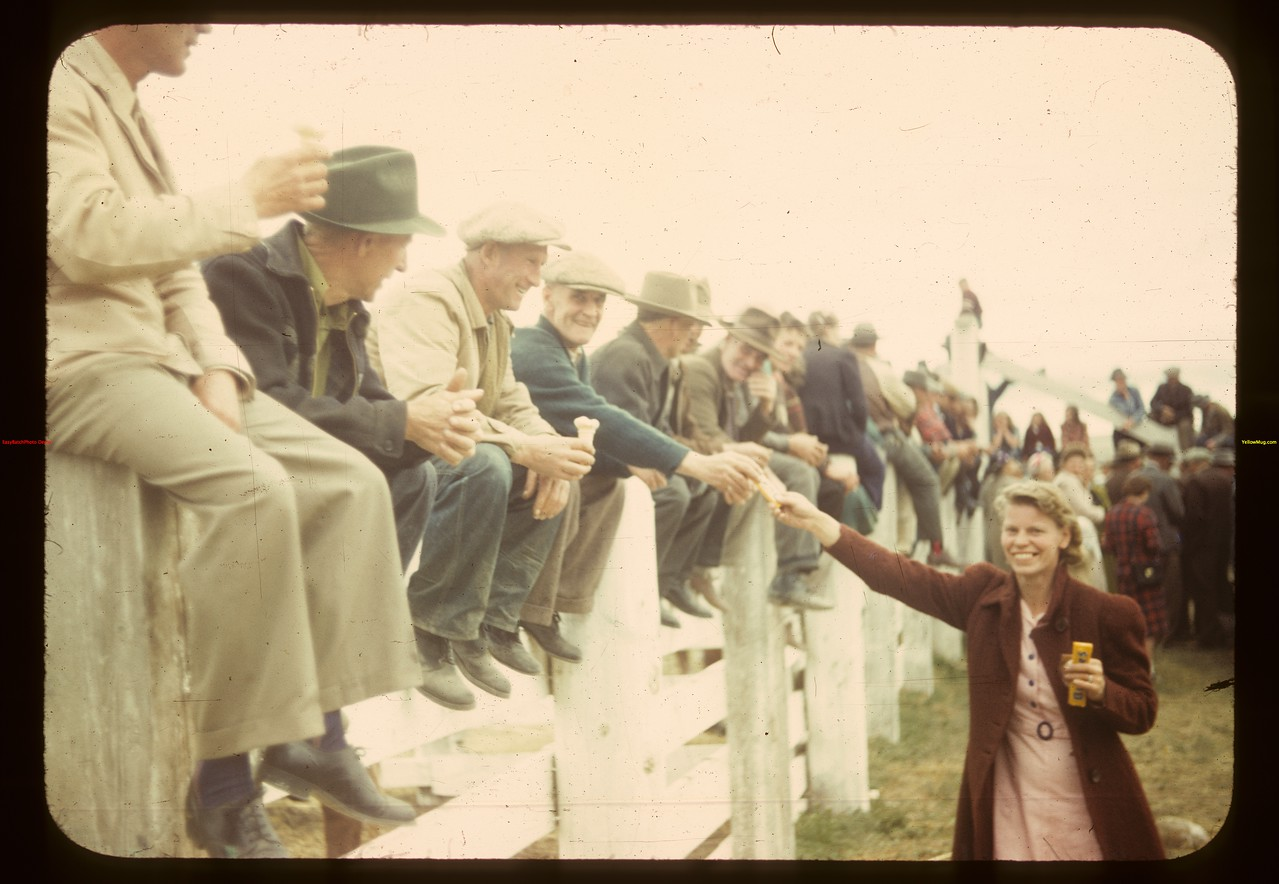 On the fence - Consul's Calf Club Show and Sale; Mrs. Bob Eccles greets Russ Kennedy	 Consul	 05/31/1949