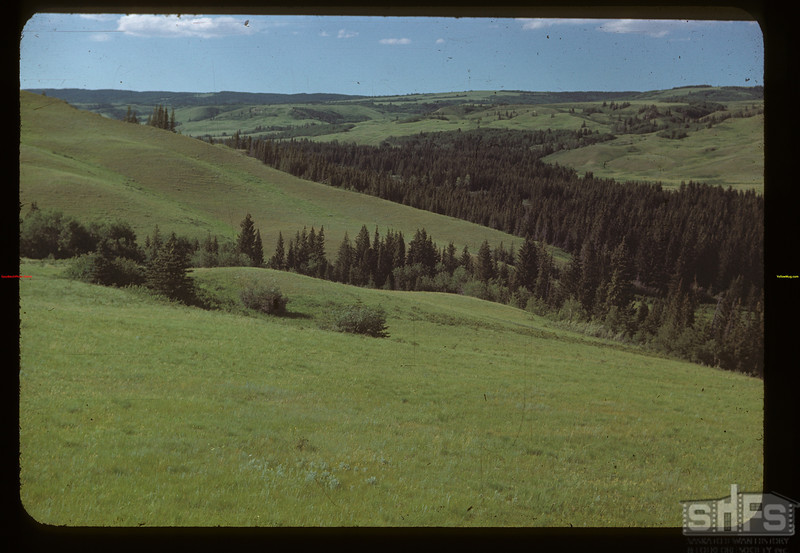 Looking north up Battle Creek from west of Old Fort Walsh Maple Creek 07/04/1948