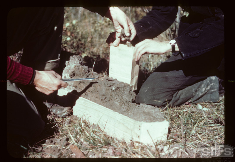 Soil samples (labelled) from profile for analysis Loon River 09/25/1944
