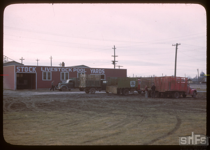 Livestock Pool stock yards - north end.  Regina.  10/22/1946