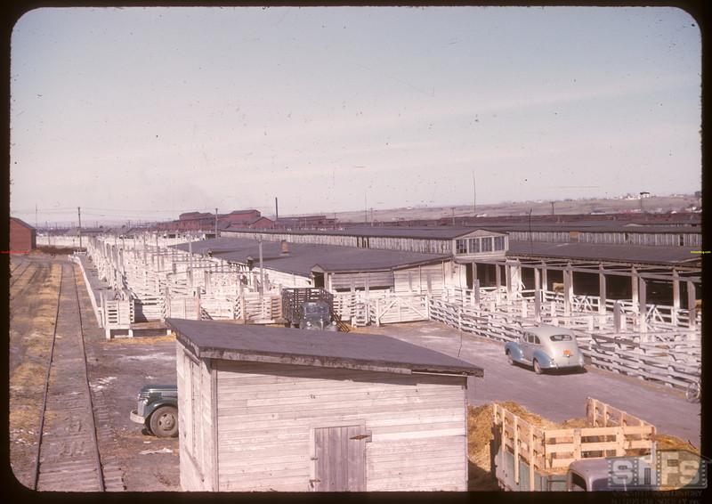 Unloading shutes (3) Co-op stock yards. Moose Jaw 04/28/1947