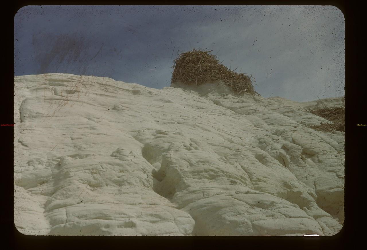 Eagles (?) nest - White Mud Butte near Watson's ranch Eastend 09/03/1948