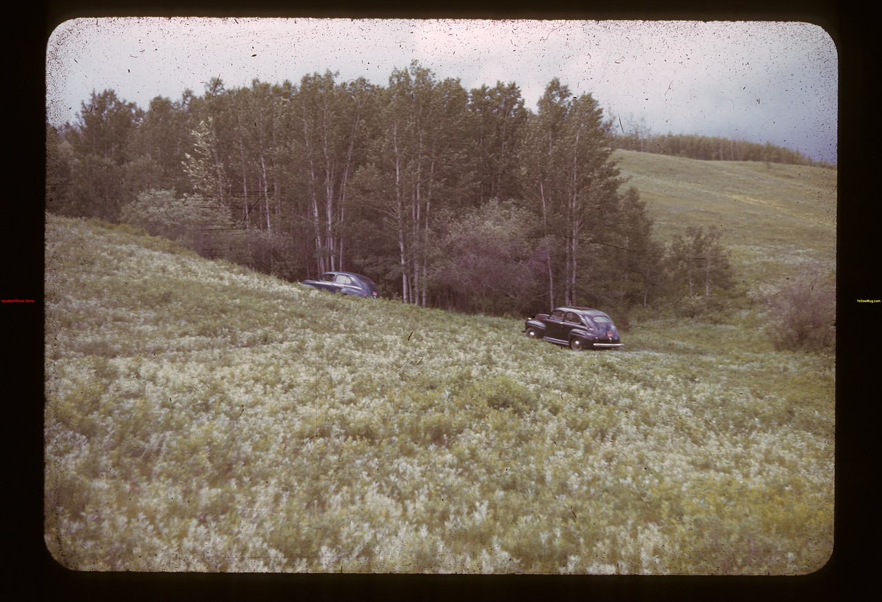 Indian rifle pits ravine Frenchman Butte 06/19/1941