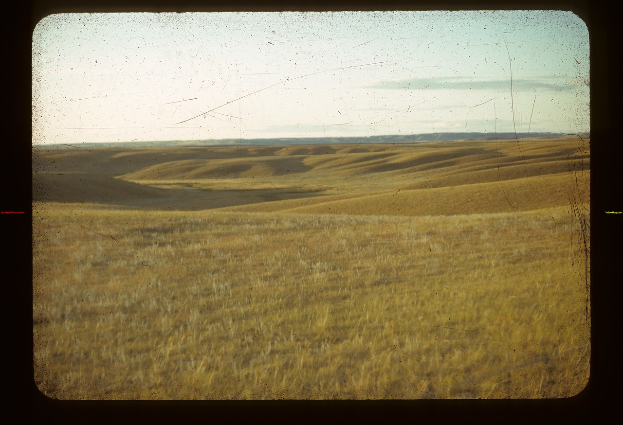 Toward Cypress Hills South of E. Eastend 08/28/1942