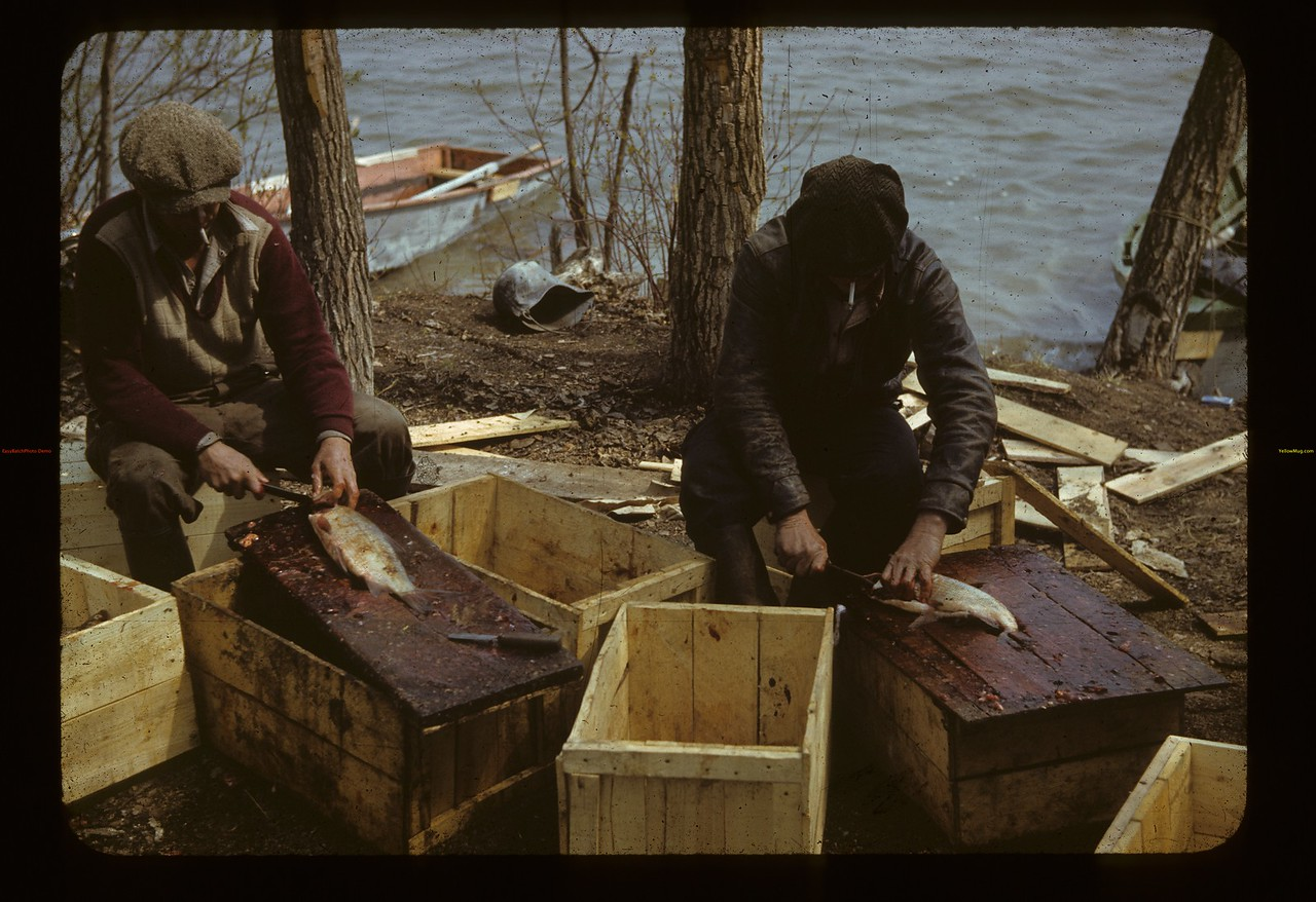 Matilla's Commerciel Fisher's. Loon Lake. 05/24/1942