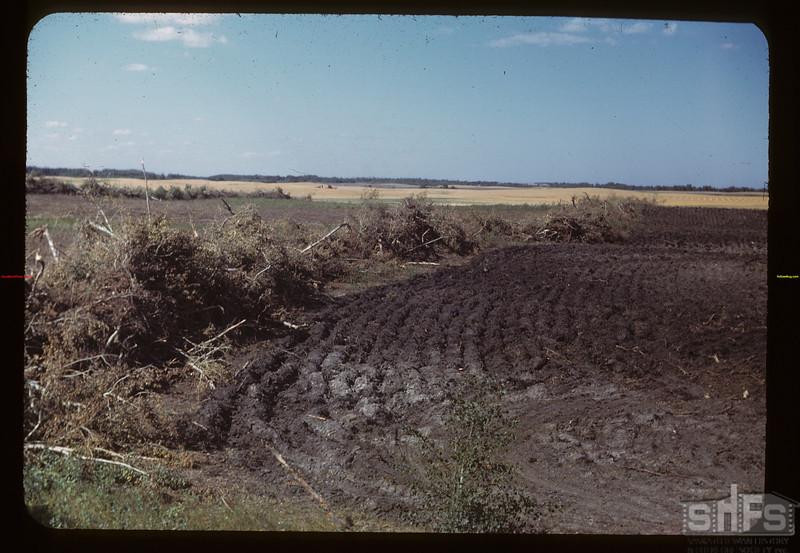 Brush piling and breaking - Springside to MacNutt MacNutt 09/01/1949