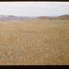 White Mud valley floor. Knollys 07/18/1948